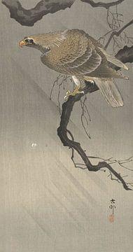Adler auf Zweig des Ohara Koson
