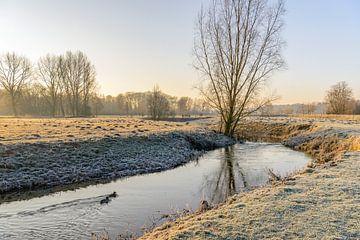 Winter landschap in de vroege ochtendzon van Ruud Morijn