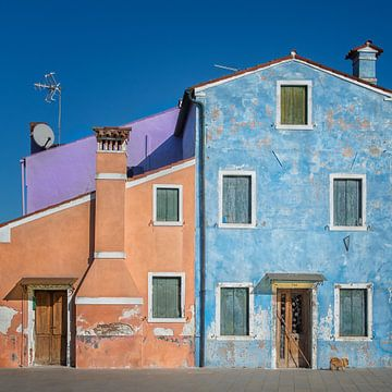Het kleine huis kleur hond, Mathilde Guillemot van 1x