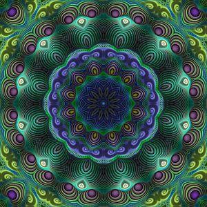 Mandala kracht van de natuur