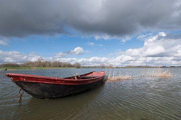 Rood roeibootje von Moetwil en van Dijk - Fotografie