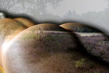 Frauen Gesäß in der Landschaft von Cor Heijnen