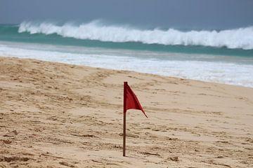 Rote Flagge am Strand von Audrey Nijhof
