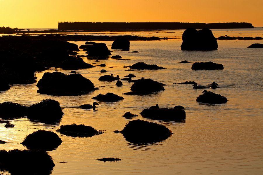 Zomnsondergang Nordstrand van Helgoland