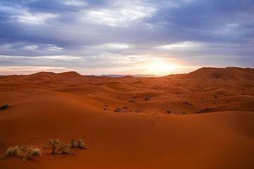 Sahara woestijn bij zonsondergang van Stijn Cleynhens
