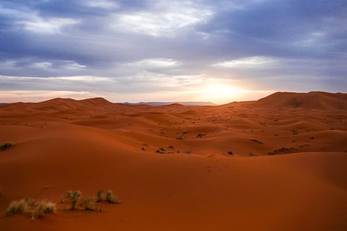 Sahara woestijn bij zonsondergang van