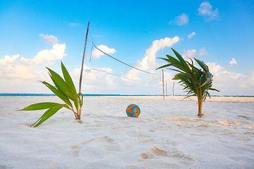 Beach volleyball on a tropical island sur Michiel Ton