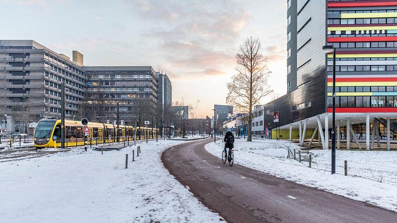 Zonsopkomst op een besneeuwd Utrecht Science Park van De Utrechtse Internet Courant (DUIC)