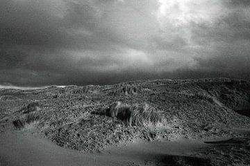 Dünen in Den Helder 1 von Jurrian Tanke