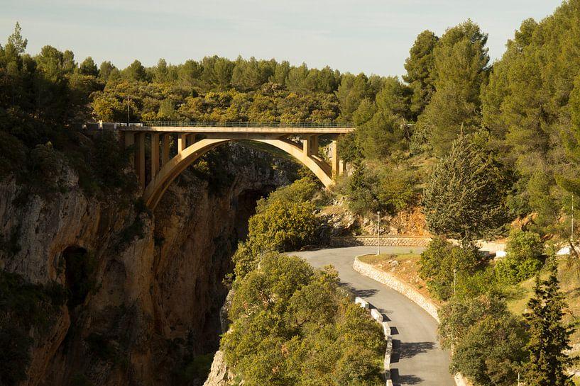Forest Bridge van Cornelis (Cees) Cornelissen