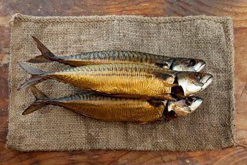 Vis van Liesbeth Govers voor omdewest.com