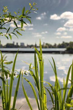 Kralingse Plas Rotterdam natuur von Rob van der Teen