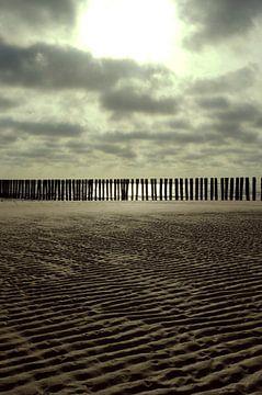 Strandpalen van Romuald van Velde