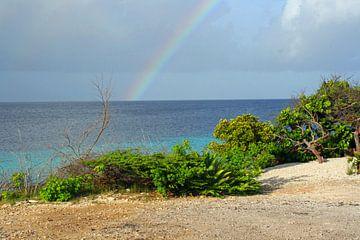 Zon zee en regenboog van Silvia Weenink