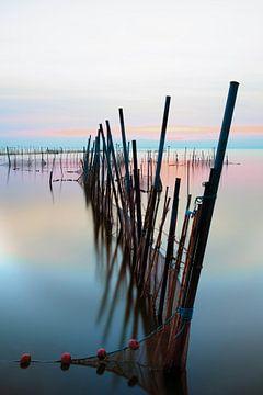 Die Fischernetze in der Laguna d' Albufera von Truus Nijland
