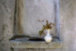 Vase van