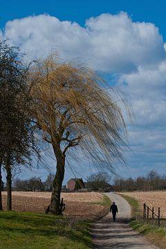 Authentiek Limburgs Heuvelland von Rick Biermans
