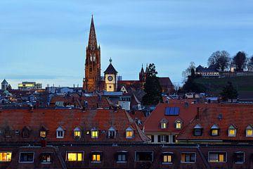 Stadtdächer in Freiburg von Patrick Lohmüller