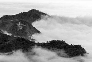 Een zee van wolken rond de bergtoppen van Alishan van