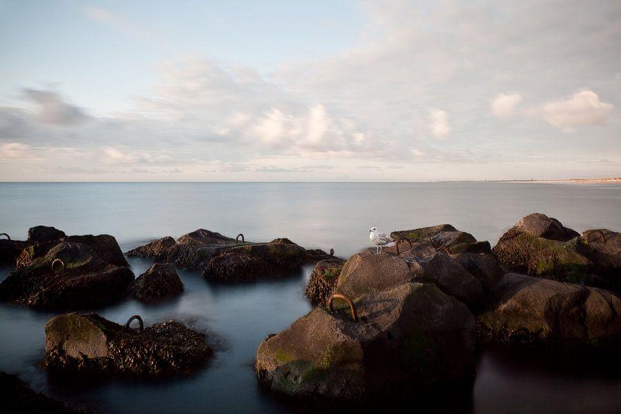 Hoek van Holland van PAM fotostudio