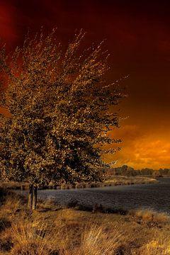 Burning sky van Cor de Keijzer