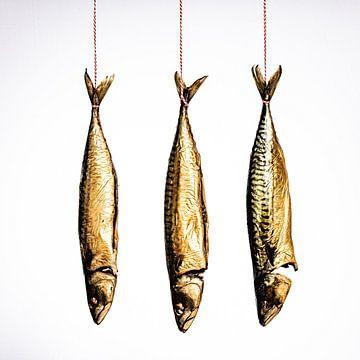 Drie makrelen hangen aan keukentouw van MICHEL WETTSTEIN