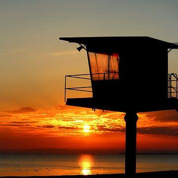 Küstenwache im Morgenrot von Heike Hultsch