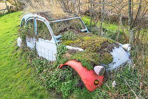 """Groene auto """"Eend"""" van Willem Visser"""