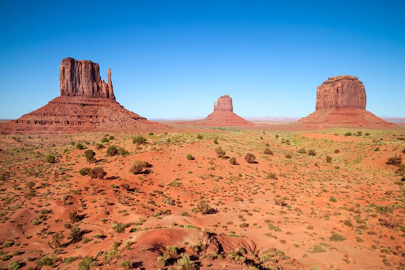 Gorgeous Monument Valley van Melanie Viola