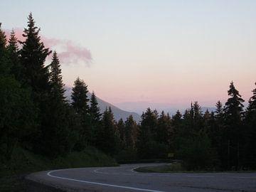 Kronkelende weg door de bossen von Sander van der Lem