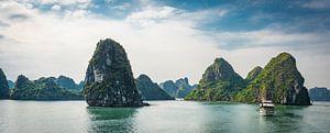 Cruise door Ha Long Bay, Vietnam van