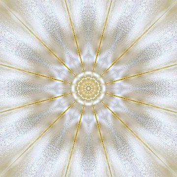 Puur licht van Nina IoKa