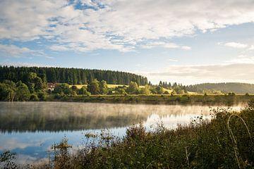 Mandelholz-dam
