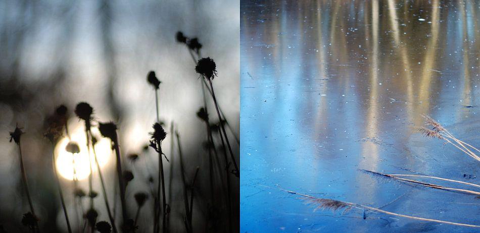 Cold as ice, tweeluik van water en land in 1 beeld (1) van Anne Hana