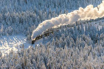 Die Harzer Schmalspurbahn im Winter