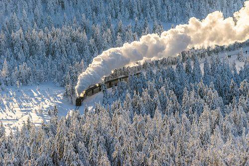 Die Harzer Schmalspurbahn im Winter van Patrice von Collani