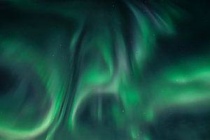 Polarlicht (Aurora Borealis) - Lady Aurora tanzt