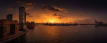Panorama van prachtige zonsopgang over de haven van Hamburg van Jonas Weinitschke