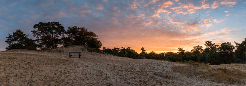 Trails In The Sand van William Mevissen