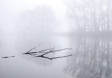 Mist van Jeroen Kleverwal