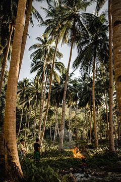 Le feu entre les palmiers Philippines sur Yvette Baur