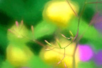 Kleurrijk van Yvon NL