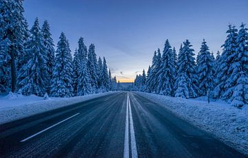 Weg durch den Harz
