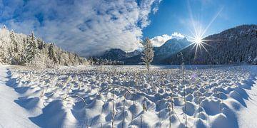 Winter in de Allgäu van Walter G. Allgöwer