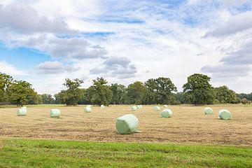 Twents landschap met hooibalen in herfst van Ben Schonewille