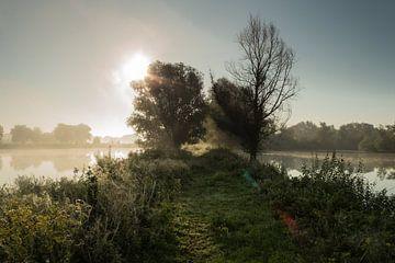 Castellumpad Arnhem bij zonsopkomst van Michel Vedder Photography