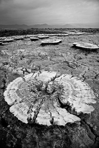 Formation de sel dans le désert d'Ethiopie