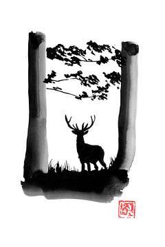 herten in het bos van philippe imbert