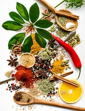 Verzameling van Specerijen en Kruiden op pollepels van Ricardo Bouman