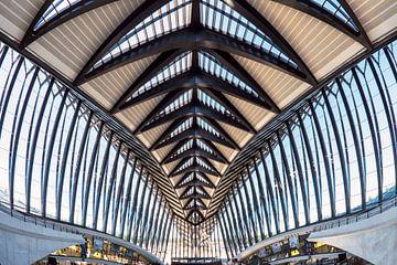 TGV-Bahnhof Saint Exupery von Ko Hoogesteger
